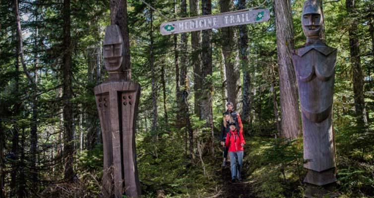 Today's Medicine Trail Walks
