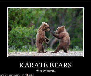 Karate Bears Whistler