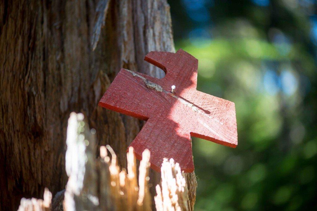 Whistler Medicine Trail