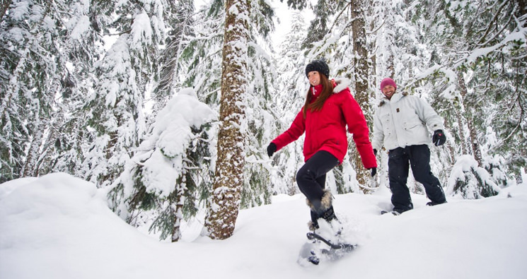 smiling couple snowshoeing through a snowy forest in whistler