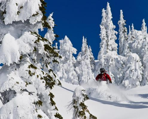 Canadian Wilderness Adventures Backcountry Snowmobile Whistler