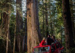 Whistler Callaghan Jeep Tour