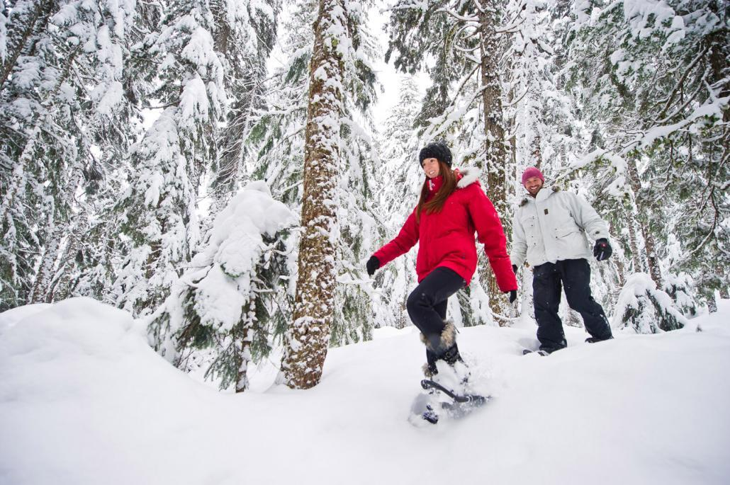 Canadian Wilderness Snowshoe Tour (Whistler)
