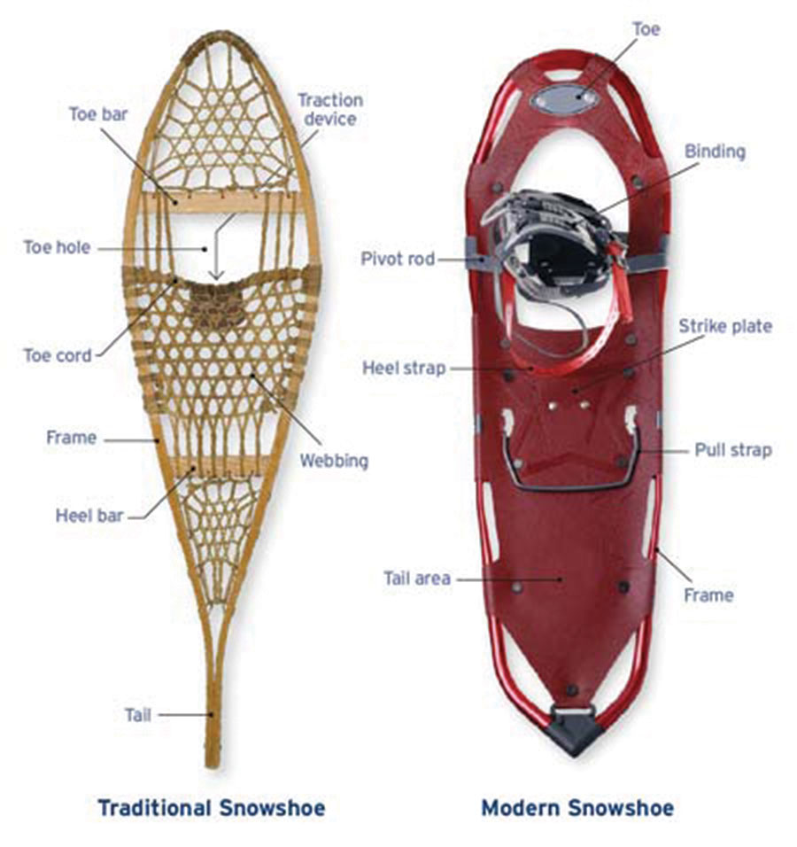 Traditional and Modern Snowshoes