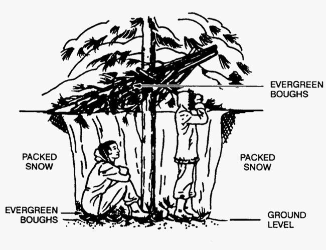Tree Pit